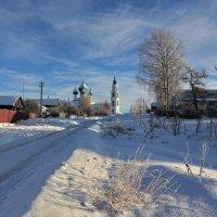 Морозное утро :: Leonid 44