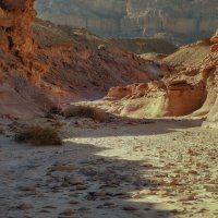 Красный каньон :: svabboy photo