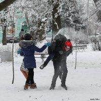 Игра в снежки :: Анатолий Шулков