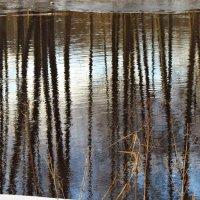 Зеркало реки :: Людмилаfdnjgjhpnhptn