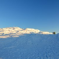 Двое   в снегах :: Николай Танаев