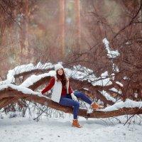 Зимняя фотопрогулка :: Александра Гилета