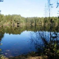 Зеркальное озеро. :: Светлана Громова