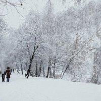 Снежно... :: анна нестерова