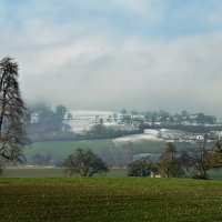 февральский туман :: Elena Wymann