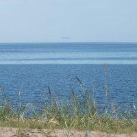 НЛО на заливом :: Андрей Кротов