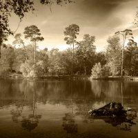 Озеро :: Дмитрий Сорокин