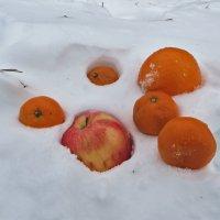 Однажды зимой :: Наталья Джикидзе (Берёзина)