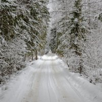 Зимняя дорога :: Николай Бирюков