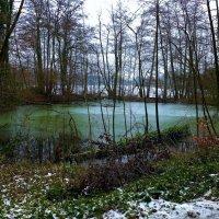 Воскресная прогулка (серия). Изумрудное озеро :: Nina Yudicheva