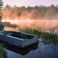 Утро. :: Андрей Олонцев