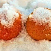 Грейпфруты на снегу :: Сергей Чиняев