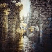 Листья и камни. Вечное старых городов. :: Ирина Сивовол