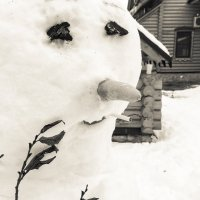 Зимняя грусть :: Сергей Федоткин