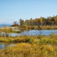 Осень, осень.... :: Николай Танаев