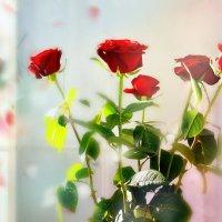 Розы красные :: Наталия Лыкова