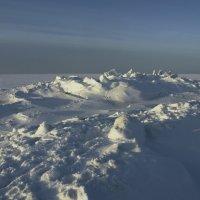 Северодвинск. У Белого моря (5) :: Владимир Шибинский
