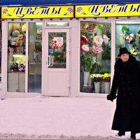 Дама и цветы... :: Кай-8 (Ярослав) Забелин