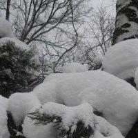 Зима в Айну :: Maikl Smit