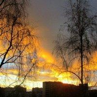 Рассвет за окном в декабре :: Leonid Tabakov