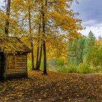 Осень на Партизанской поляне :: Лариса Березуцкая