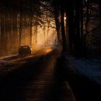солнце уже низко :: Андрей Арнольд