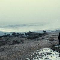 Туманный альбион :: Анатолий Шулков