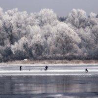 На тонком льду :: Svetlana