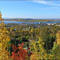 Осень на Среднем Урале :: Leonid Rutov