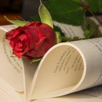 Love :: Дмитрий