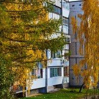 Осень :: Александр кузнецов