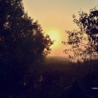 Восход солнца в тумане :: Вера