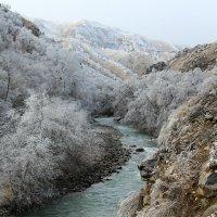 Река Малка :: Светлана Попова