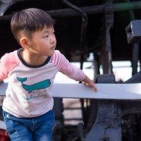 Мальчик на паровозе :: _Катюша _