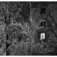 Ночные окна :: Людмила Фил