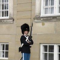 страж у дворца в Копенгагене :: Светлана