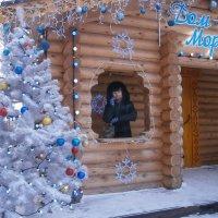 Дом Деда Мороза в городе Владимир :: Людмила В.