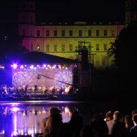 ночь музыки в Гатчинском парке :: Анатолий Кошевенко