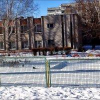 Три вороны в детском саду :: Нина Корешкова
