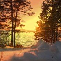 Зимний Берег Ангары :: Anastasiya Ageeva