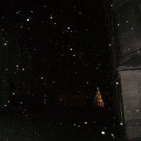 Новогодняя ночь в монастыре :: Марина Домосилецкая