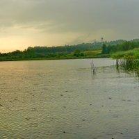 Летний дождь. :: Анатолий Борисов