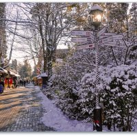 Снег в Сочи.... :: СветЛана D