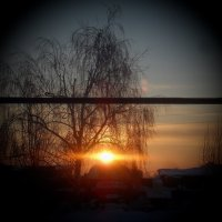 Утро :: Татьяна Носова