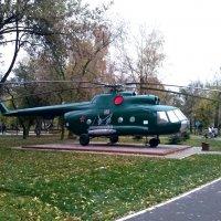 В нашем дворе приземлился вертолёт.... :: Мила