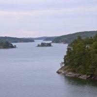 Острова Швеции-3 :: Александр Рябчиков