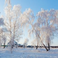 Мороз и солнце... :: Анатолий Иргл