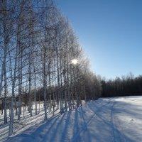 зимние пейзажи.... :: Дмитрий Денисов