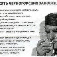 Черногорские Заповеди :: Лев