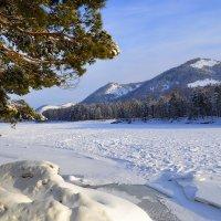 Зима на Алтае! :: Tatiana Lesnykh Лесных